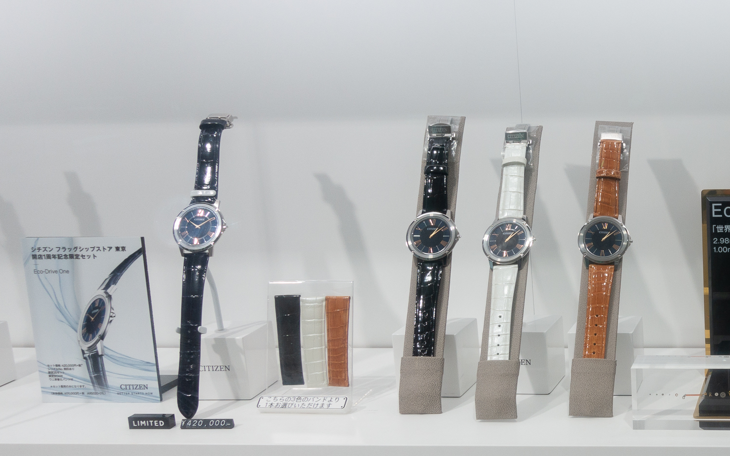 Strap Choices for Eco-Drive One