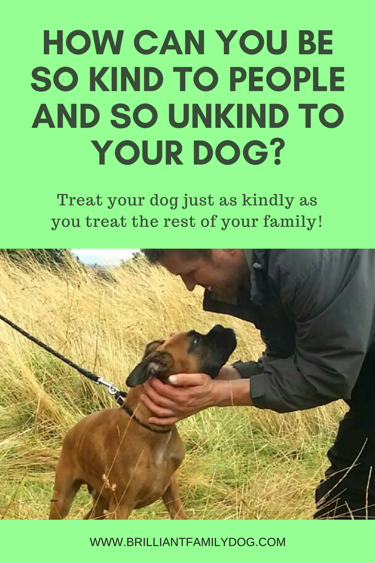 Dog training, new puppy, puppy training, dog behavior | Your dog is sensitive! Treat your dog as kindly as you would any other member of your family | FREE EMAIL COURSE | #newpuppy, #dogtraining, #puppytraining, #dogbehavior | www.brilliantfamilydog.com
