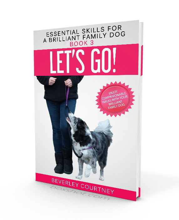 Dog training, new puppy, puppy training, dog training book, loose leash walking | Let's Go! Enjoy Companionable Walks with your Brilliant Family Dog Book 3, by Beverley Courtney | FREE EMAIL COURSE | #newpuppy, #dogtraining, #newrescuedog, #doghealth, #dogbehavior | www.brilliantfamilydog.com