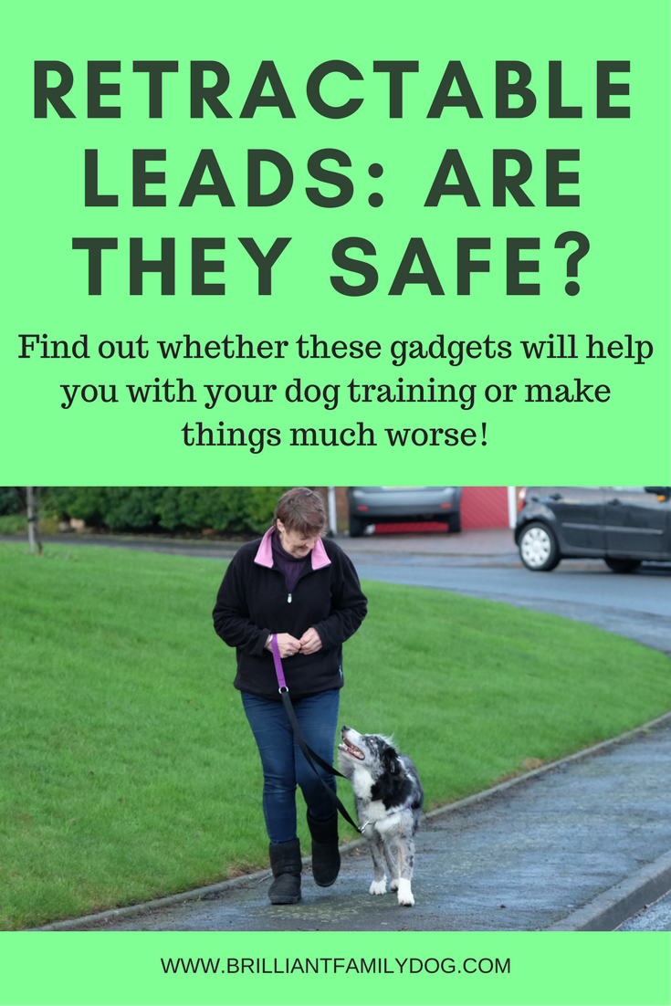 Dog training, new puppy, puppy training | Retractable leads are they safe? 7 reasons NOT to use them | FREE EMAIL COURSE | #newpuppy, #dogtraining, #newrescuedog, #puppytraining, #dogbehavior | www.brilliantfamilydog.com
