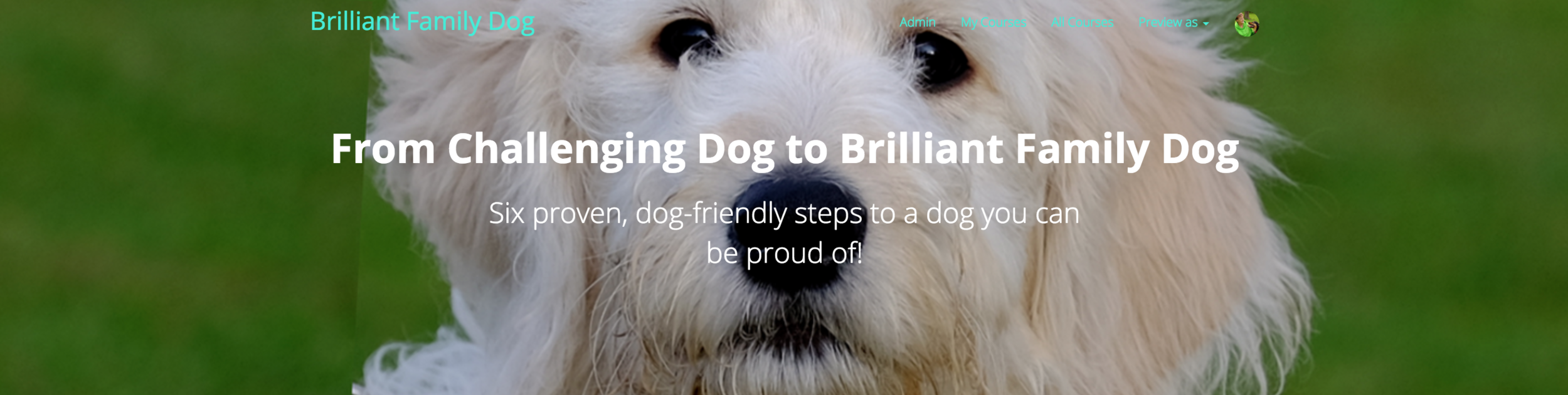 New rescue dog? Your dog getting naughtier?! | Superb online Dog Training Course with daily video lessons! | CLICK FOR DETAILS | #naughtydog, #newrescuedog, #dogtraining | www.brilliantfamilydog.com