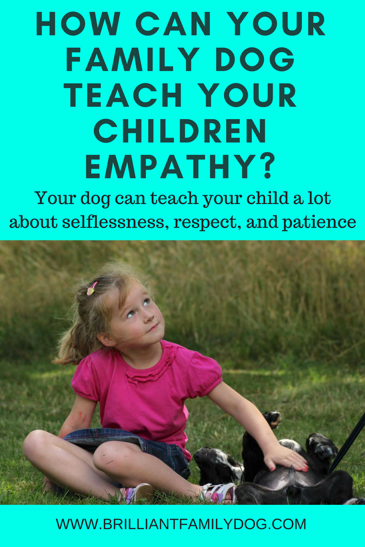 Can your dog teach your children empathy? Oh yes! And so easily. Plenty of ideas and resources in this post | FREE EMAIL COURSE | Dog training, new puppy, puppy training, dogs and children | #newpuppy, #dogtraining, #newrescuedog, #puppytraining, #dogbehavior | www.brilliantfamilydog.com