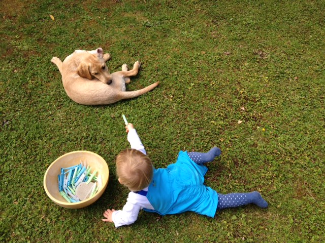 Puppies and children need no-pressure interactions from the start. Plenty of ideas and resources in this post | FREE EMAIL COURSE | Dog training, new puppy, puppy training, dogs and children | #newpuppy, #dogtraining, #newrescuedog, #puppytraining, #dogbehavior | www.brilliantfamilydog.com
