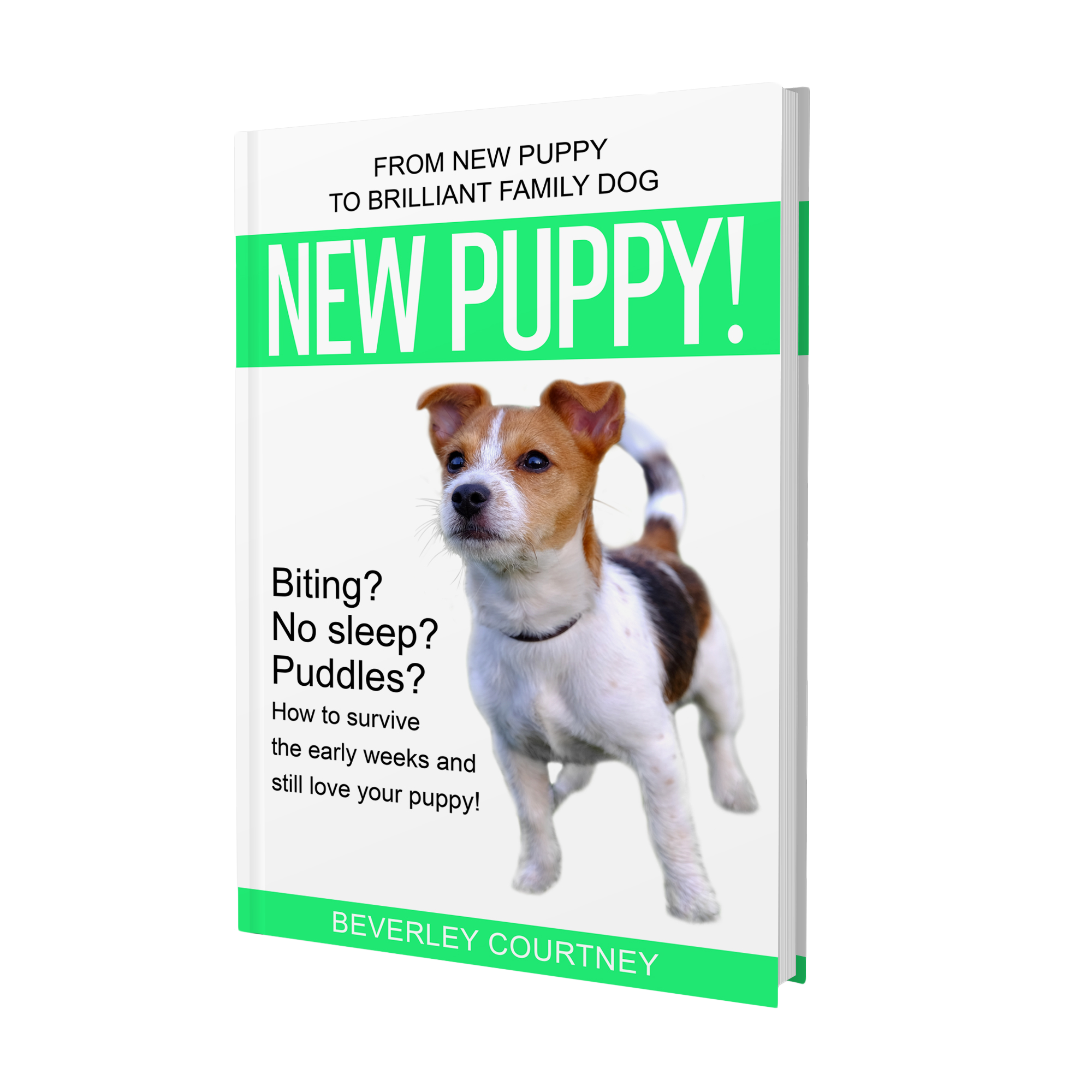 """PUPPY BITING? NO SLEEP? PUDDLES?  """"New Puppy!"""" the latest book in the Brilliant Family Dog series of dog-friendly training books will save your sanity and have you loving your puppy again"""