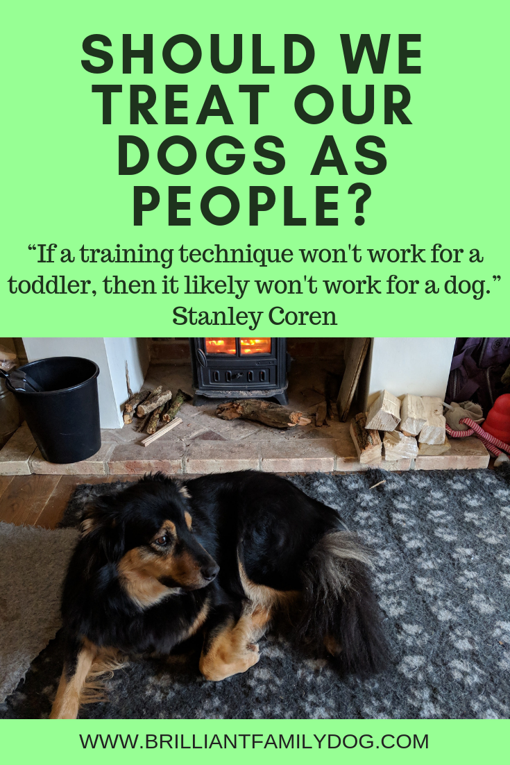 "Should we treat our dogs as people? ""If a training technique won't work for a toddler, then it likely won't work for a dog.""  