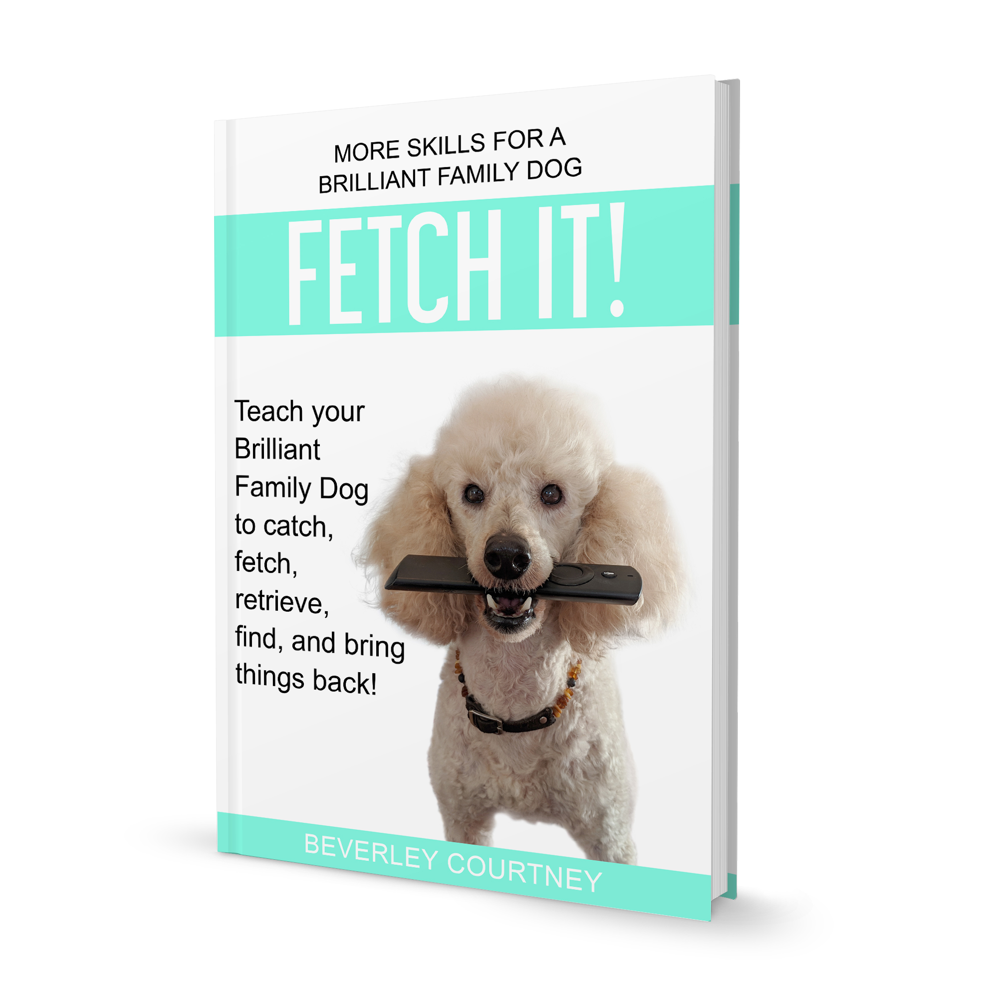 Want to turn your dog into a star retriever? Check Fetch it! Teach your Brilliant family Dog  to catch fetch, retrieve, find and bring things back! and enjoy a new relationship with your dog.