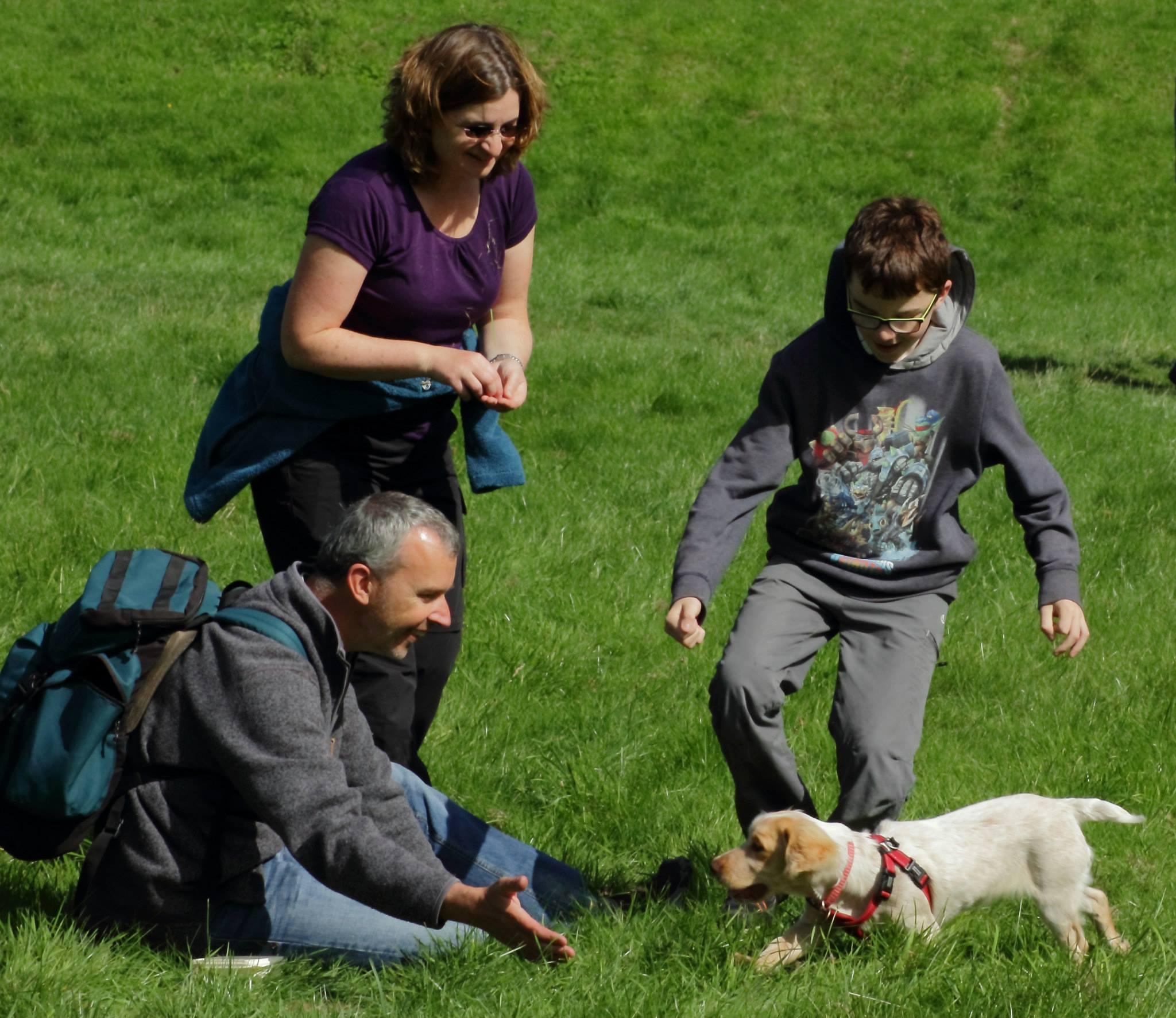 family + spaniel pup