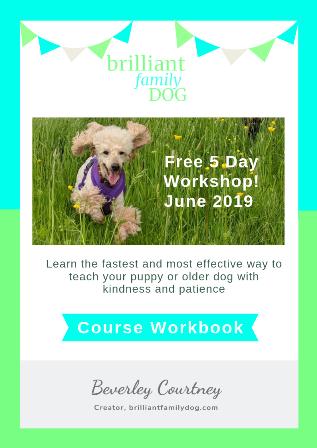 5 Day Workshop June 2019 Workbook