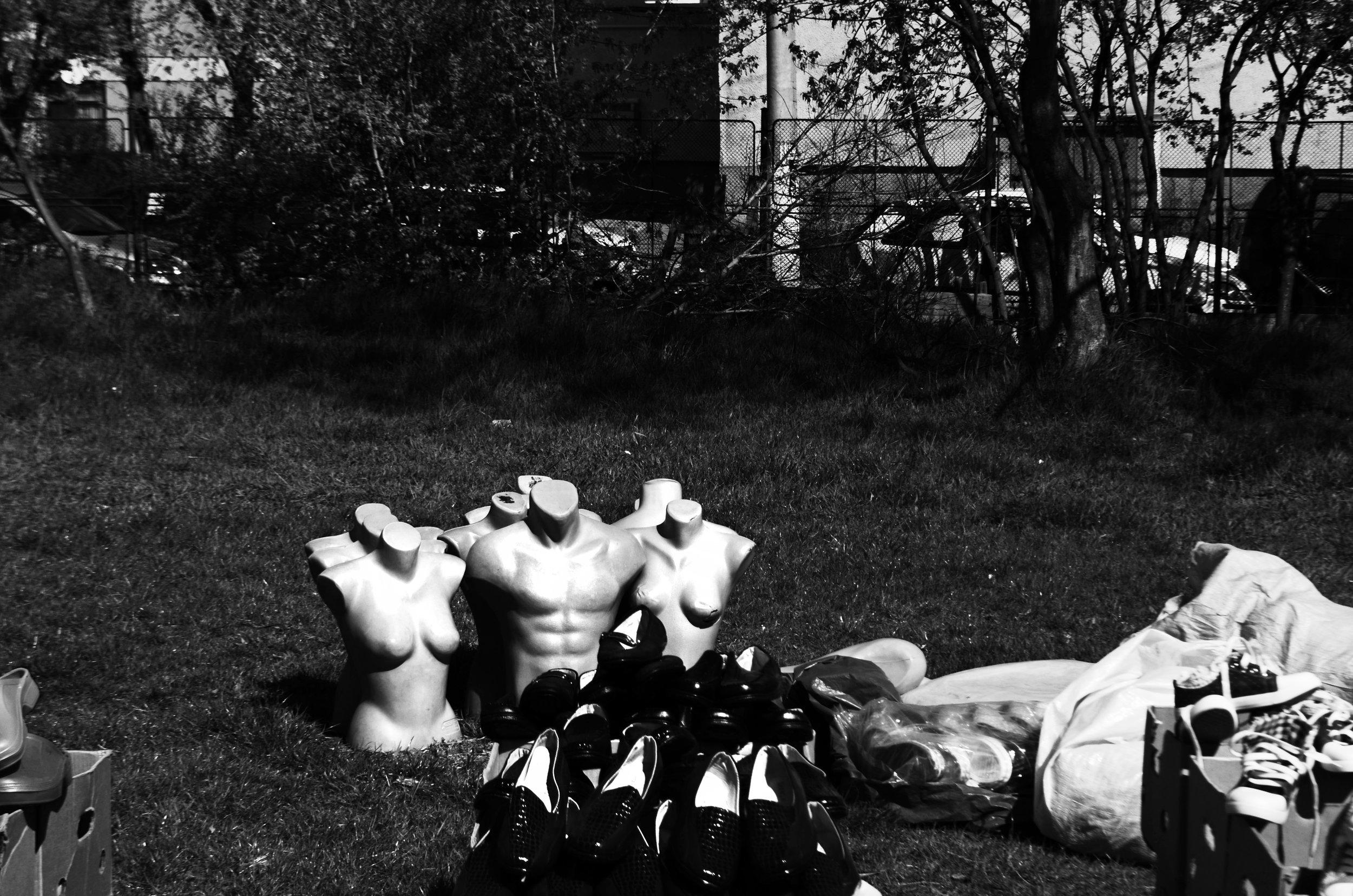 plastic bodies.jpg