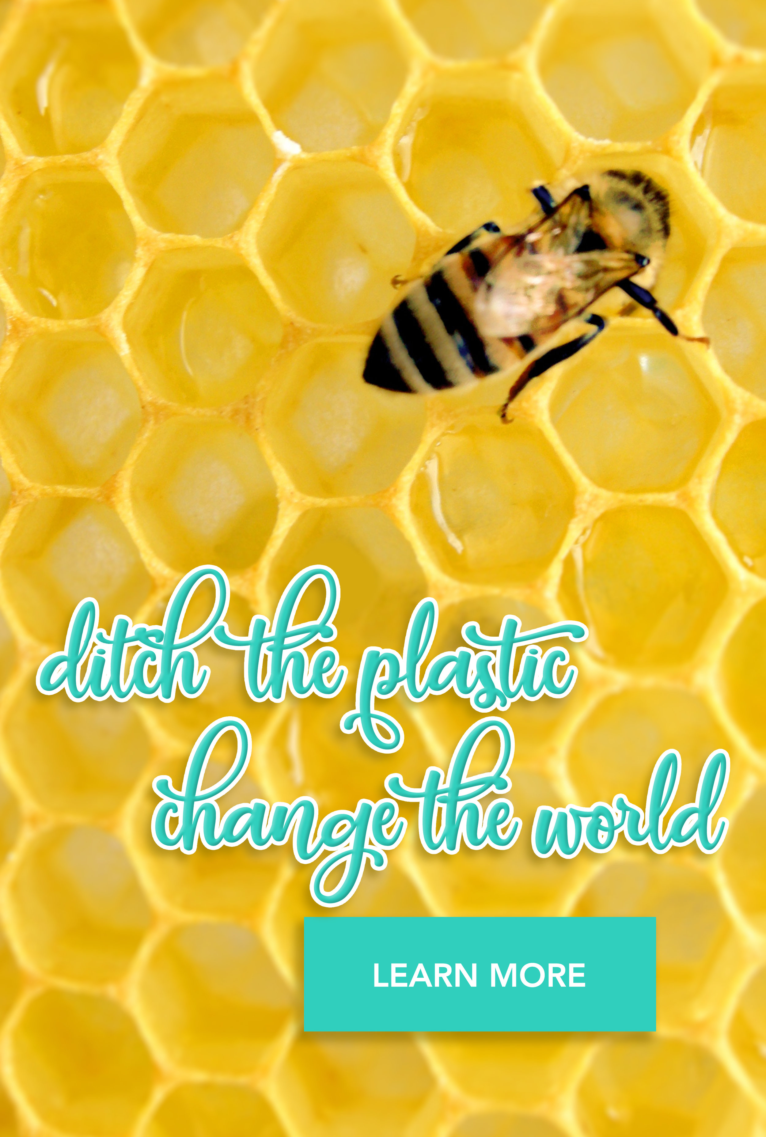 some of your beeswax.jpg