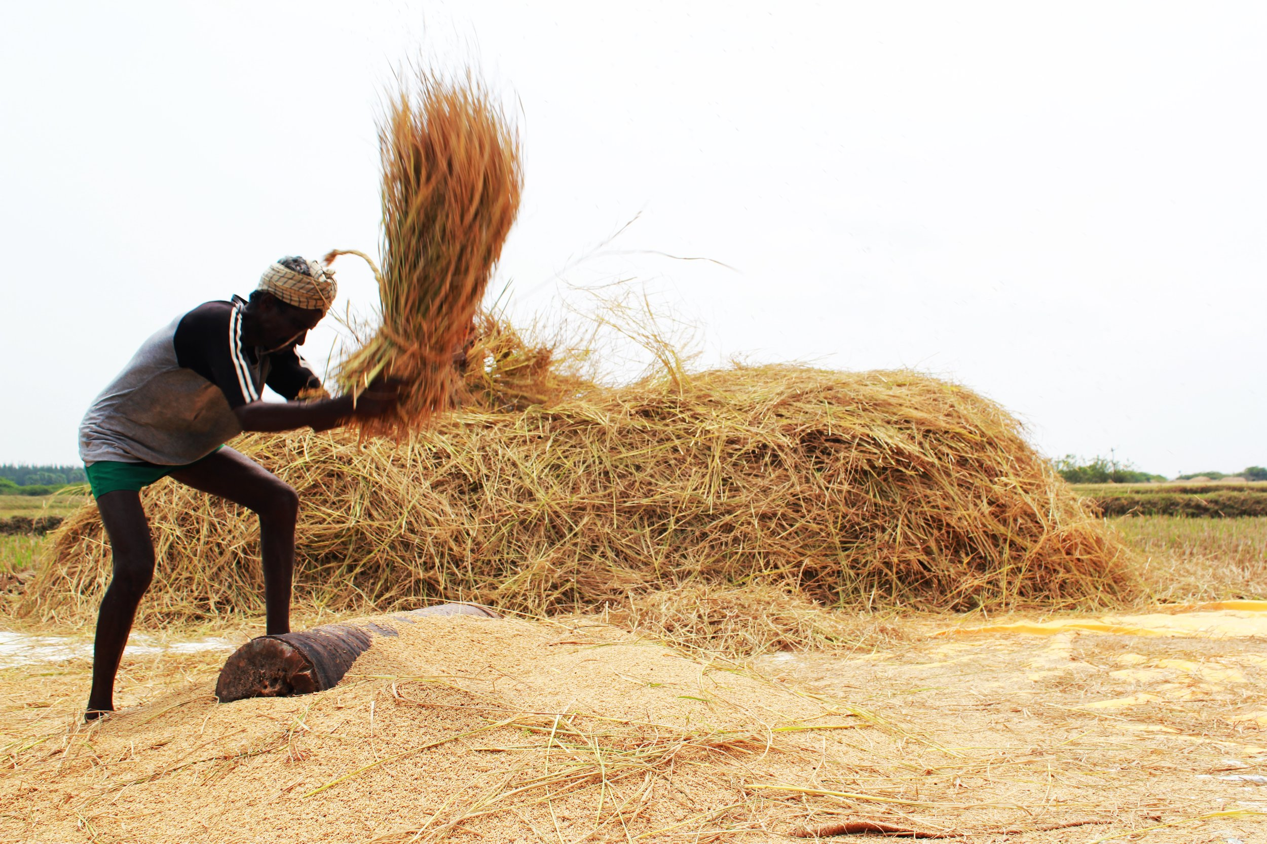 A_farmer.jpg