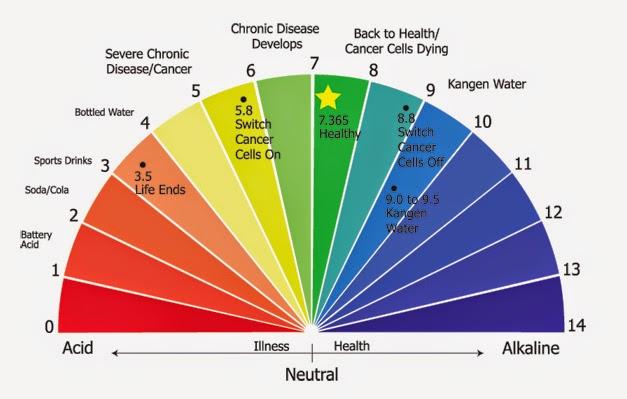 Kangen-Water-pH-chart1.jpg