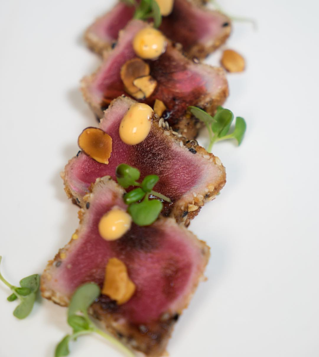 Miami Venue / Miami Catering - Tuna Tataki Appetizer