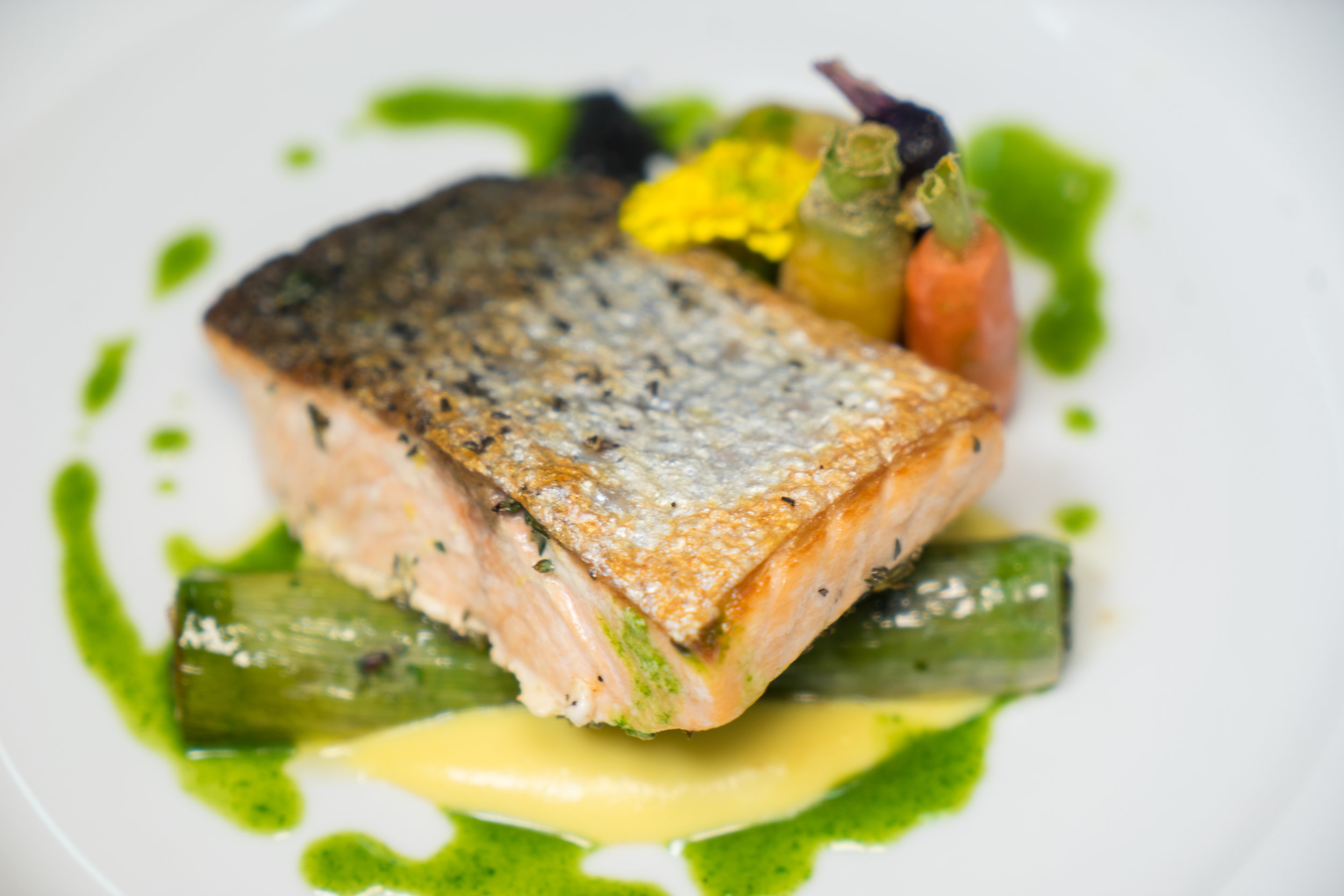 Miami Venue / Miami Catering - Baked Salmon Entree