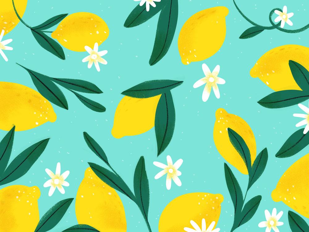 lemons_maia_faddoul.jpg