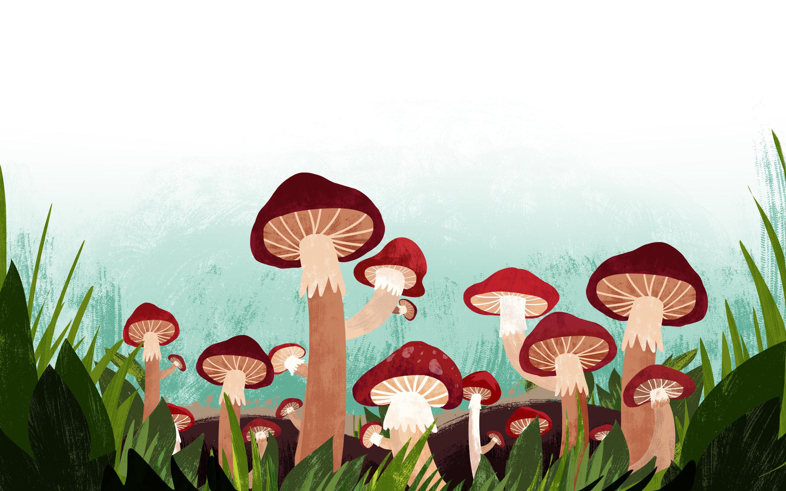 2shrooms book3.jpg