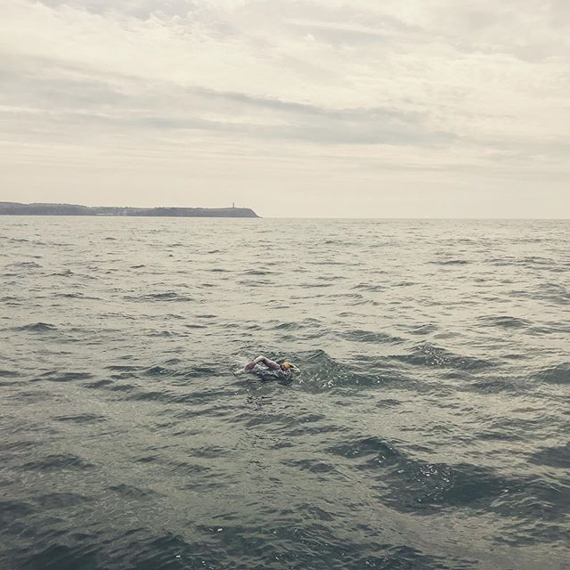 Sarah Thomas just made a little history. She successfully landed right on Cap Gris Nes to complete her third leg of her #4WayEnglishChannelSwim. She made the turn, becoming the first person even to start the fourth lap back to England.  #outdoorswimmer  #swimwildandfree  #nightswim #survivor #breastcancer