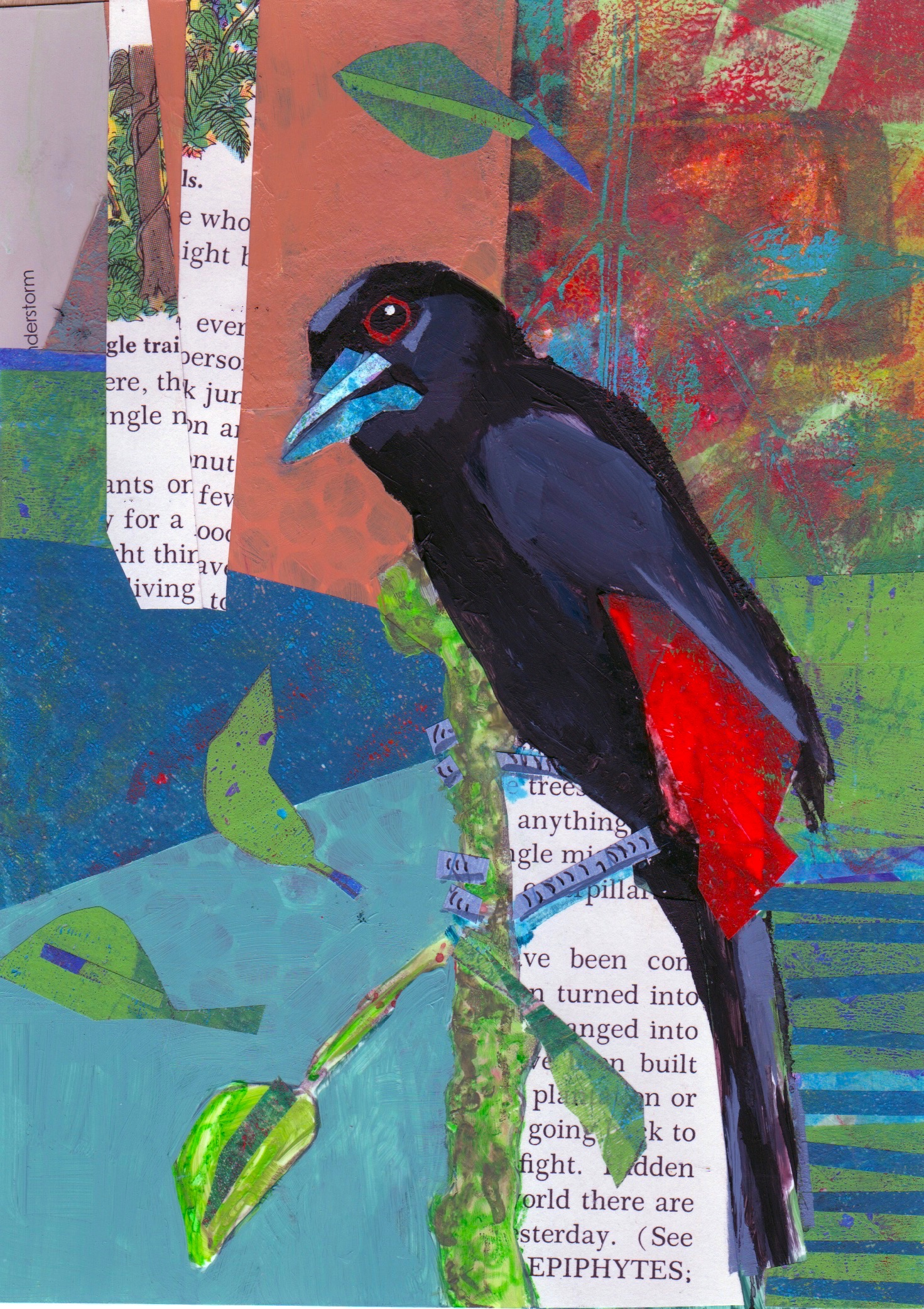 Cherrie's Tanager,  Caroline Coolidge Brown