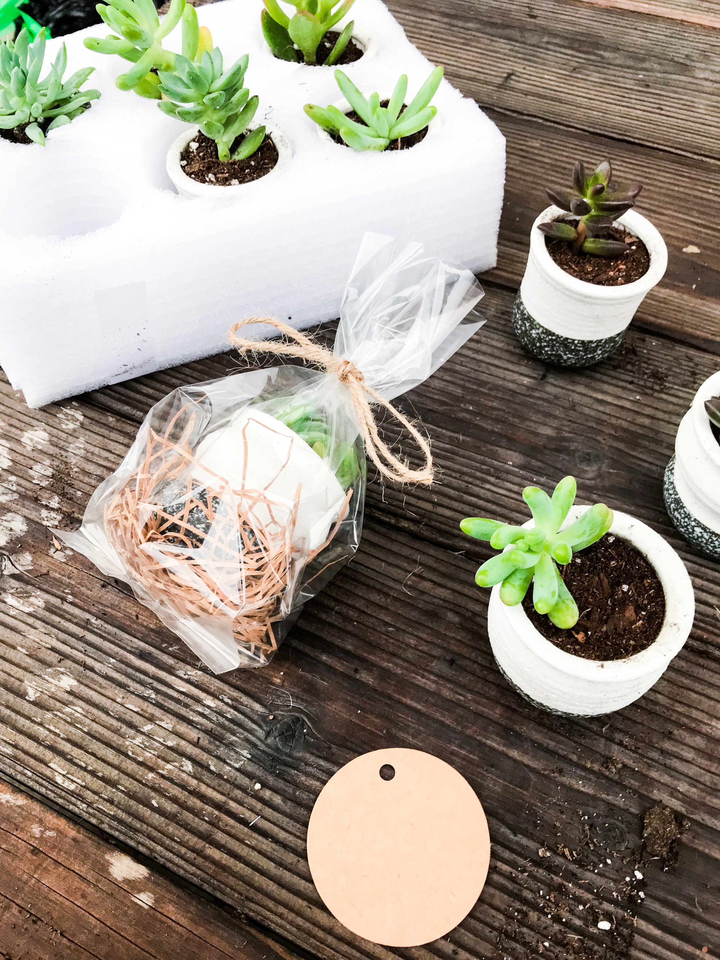 Bulk Farewell Gifts for Coworkers: DIY