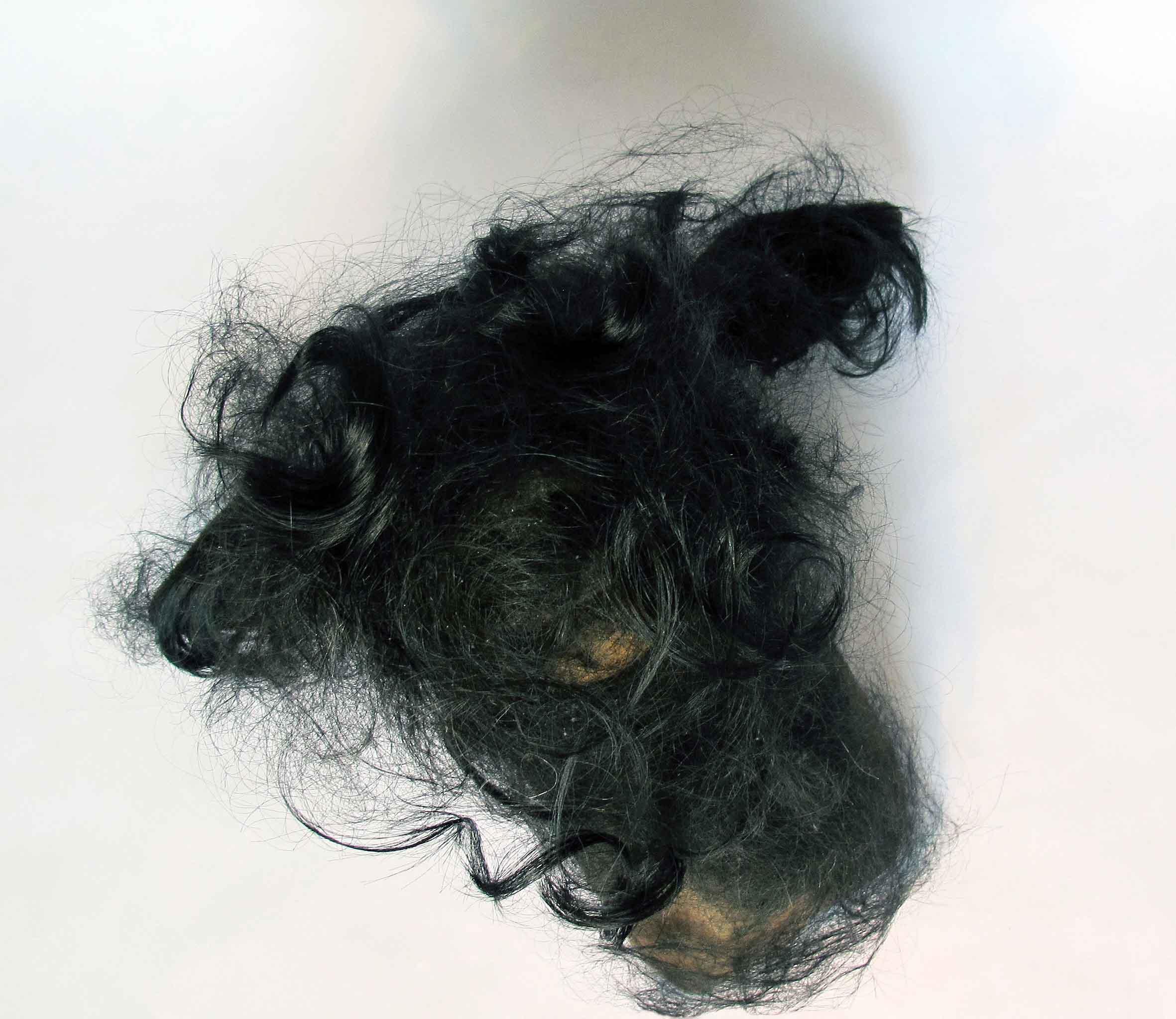 Jayne Dyer, Dear , 2013, resin, human hair, 40 x 30 x 28cm, presented in vitrine (20 x 24 x 34cm) on display table (24 x 28 x 83cm)