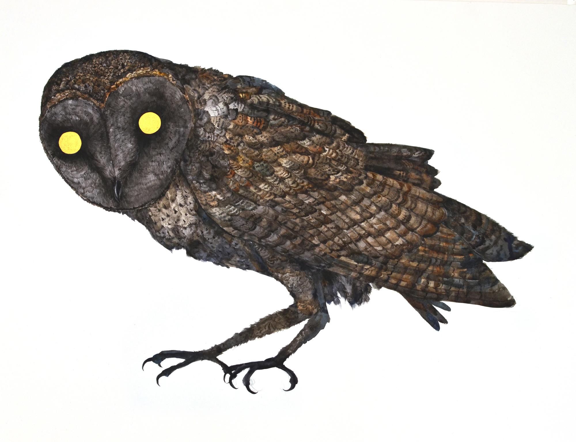 Simon MacEwan, Watcher I , 2012, watercolour on paper, 56 x 76cm