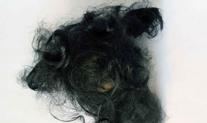 Jayne Dyer,Dear,  2013 , resin, human hair, 40 x 30 x 28cm, presented in vitrine (20 x 24 x 34cm) on display table (24 x 28 x 83cm)