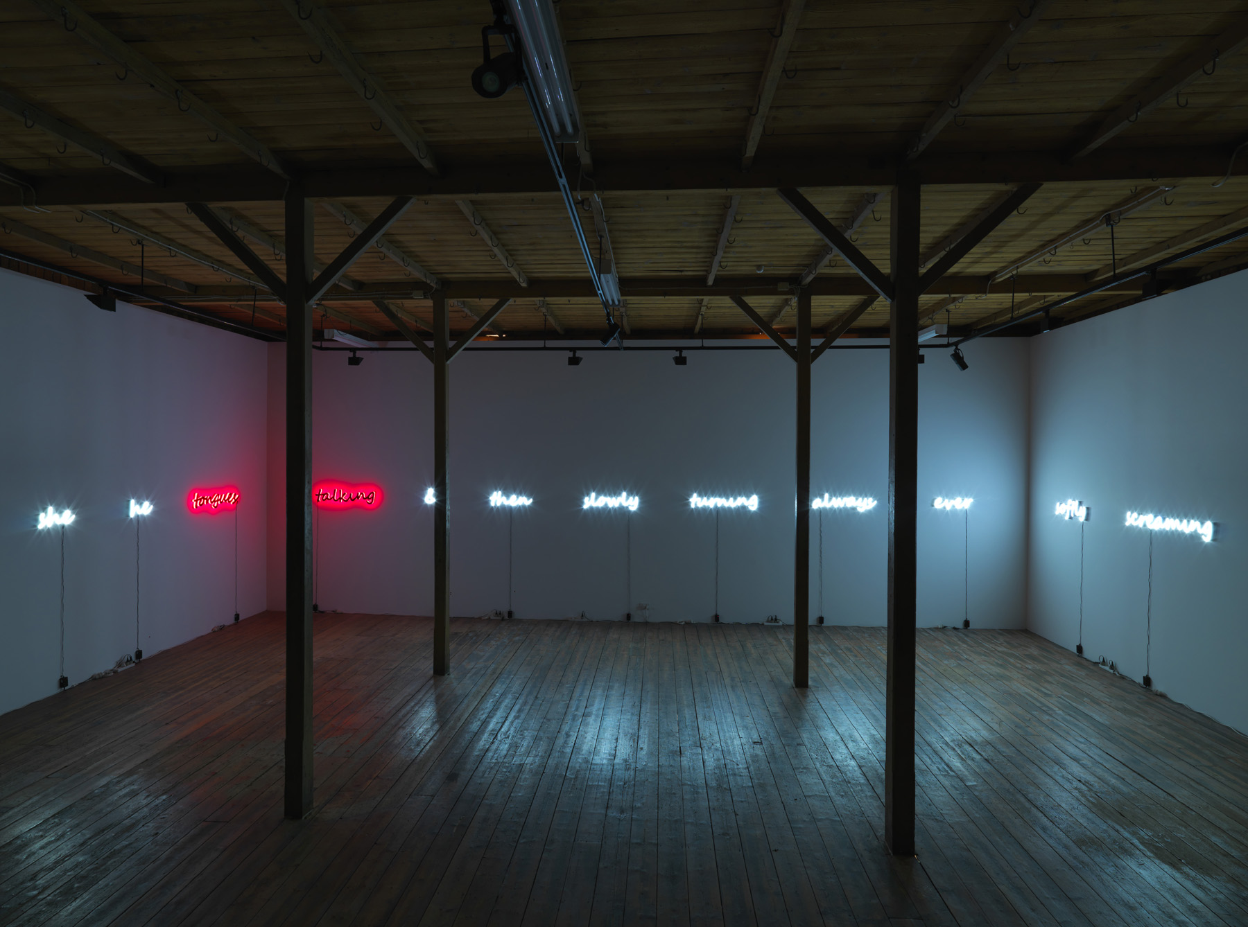 Jayne Dyer,  Talking in Tongues , 2010 (installation works). Selected works available.
