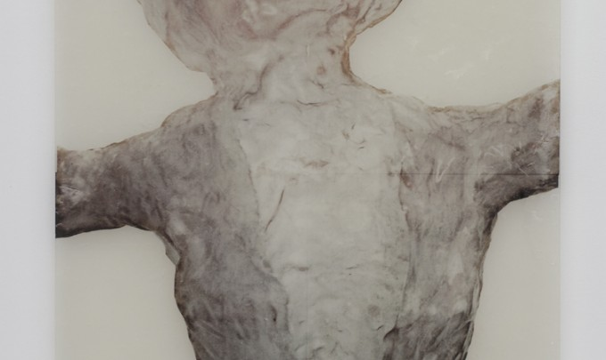 Elisabeth Weissensteiner, Early Conciousness , 2008, polyester resin, fibreglass, inkjet print on Chinese paper on glass