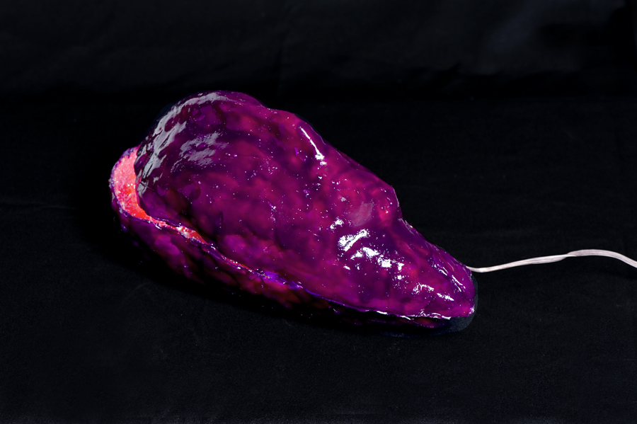 Elisabeth Weissensteiner,  Crimson Brain-Shell , 2012, polyester resin, fibreglass, pigments, LED light, 25 x 15 x 15cm
