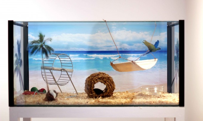 Bonnie Lane,  The People's Paradise , 2011, fish tank, vinyl prints, wood, mice, 30 x 61 x 31cm