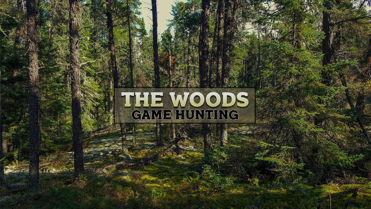 WoodsGame.jpg