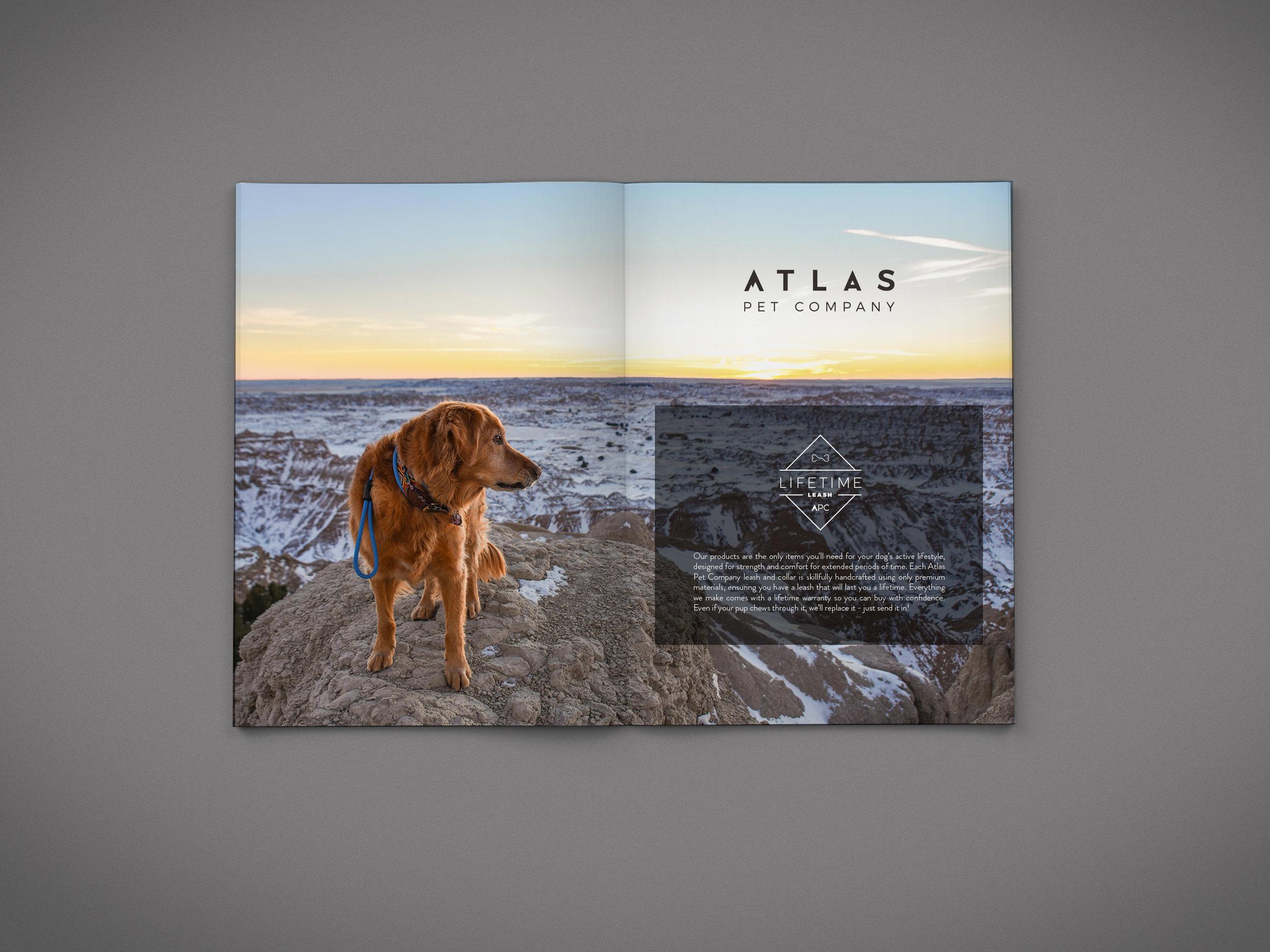 brochure_pages_mock_up-5.jpg