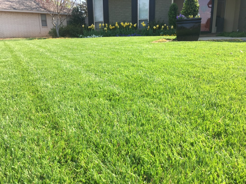 Anytime we make an application of weed control or fertilizer, please let us know if you have any concerns 10-14 days after our visit. If the turf isn't greening up properly, or if weeds are not wilting, we want to know. If you are new to our program, we know it will take time to get your lawn to the healthy condition you desire. But we expect to make progress with each visit. We know this may require additional visits and if you are on our full 7- Step Program, we will make the needed extra visits.
