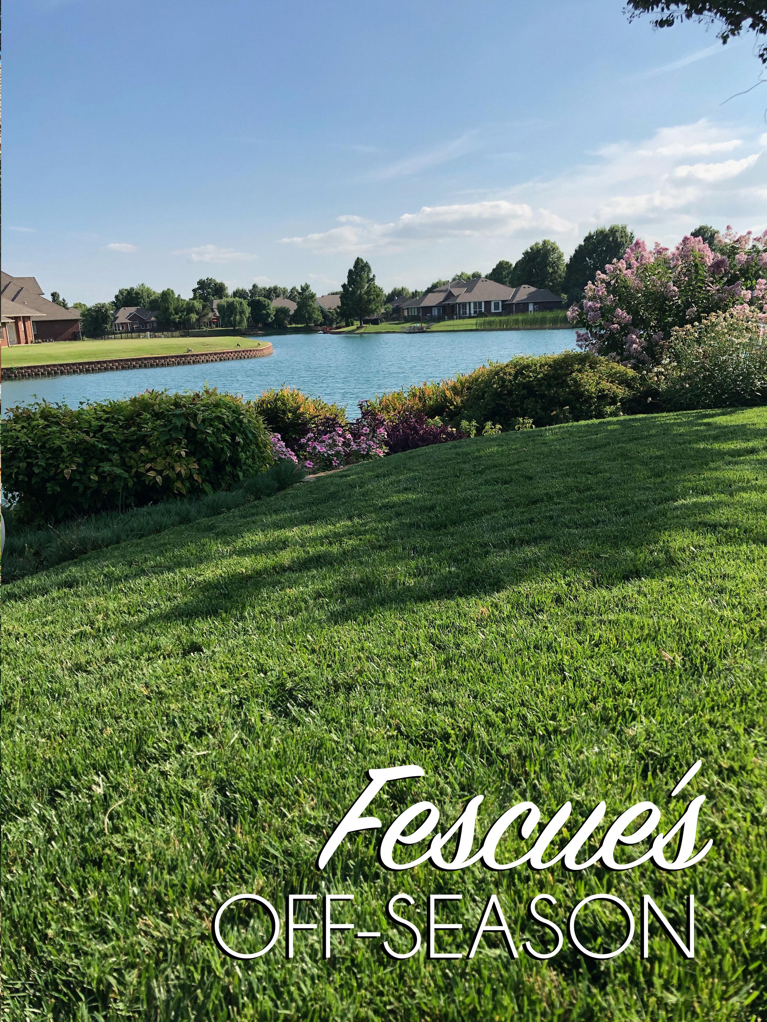 Fescue's Off Season.jpg