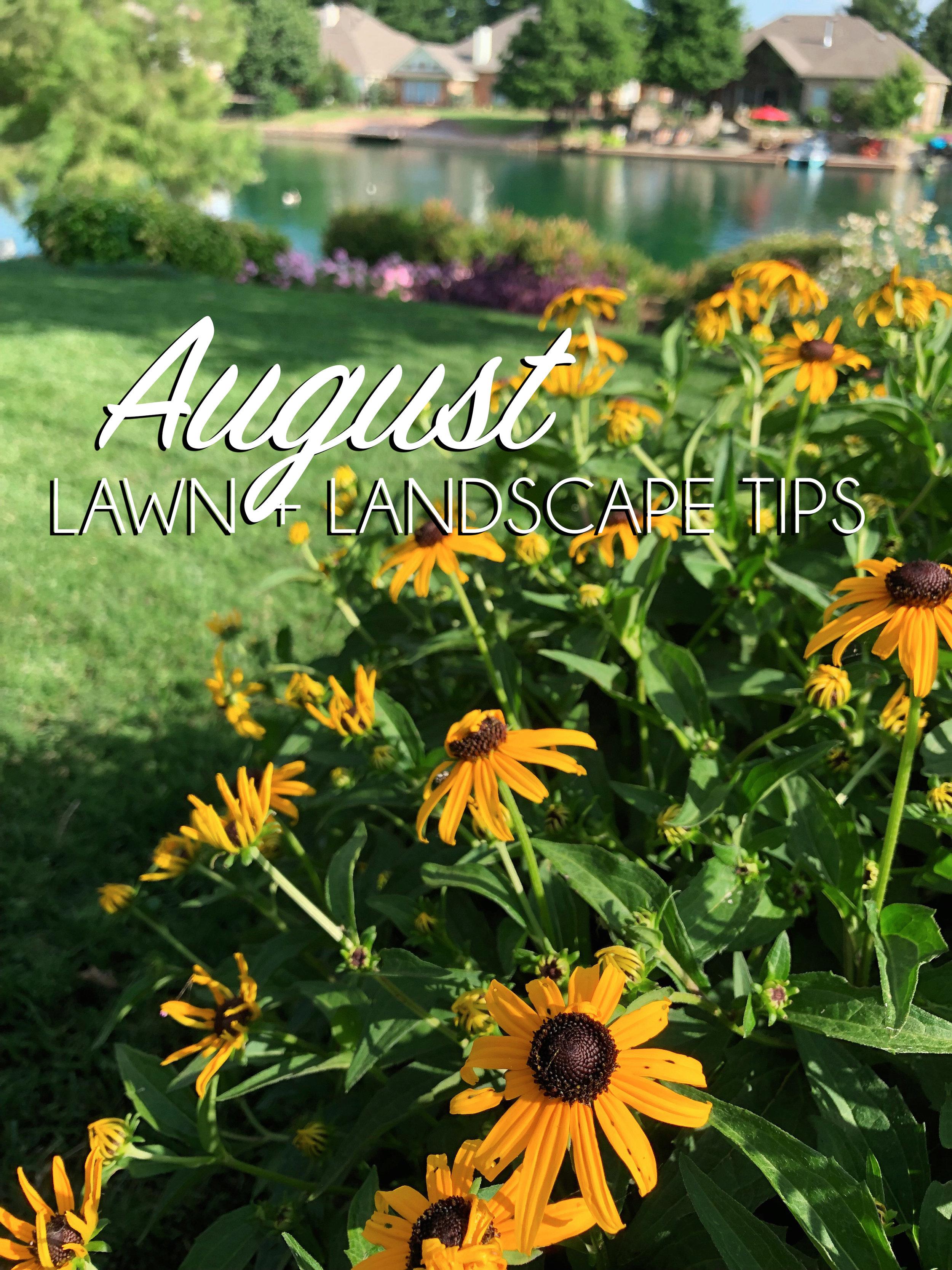 August Lawn & Landscape Tips.jpg