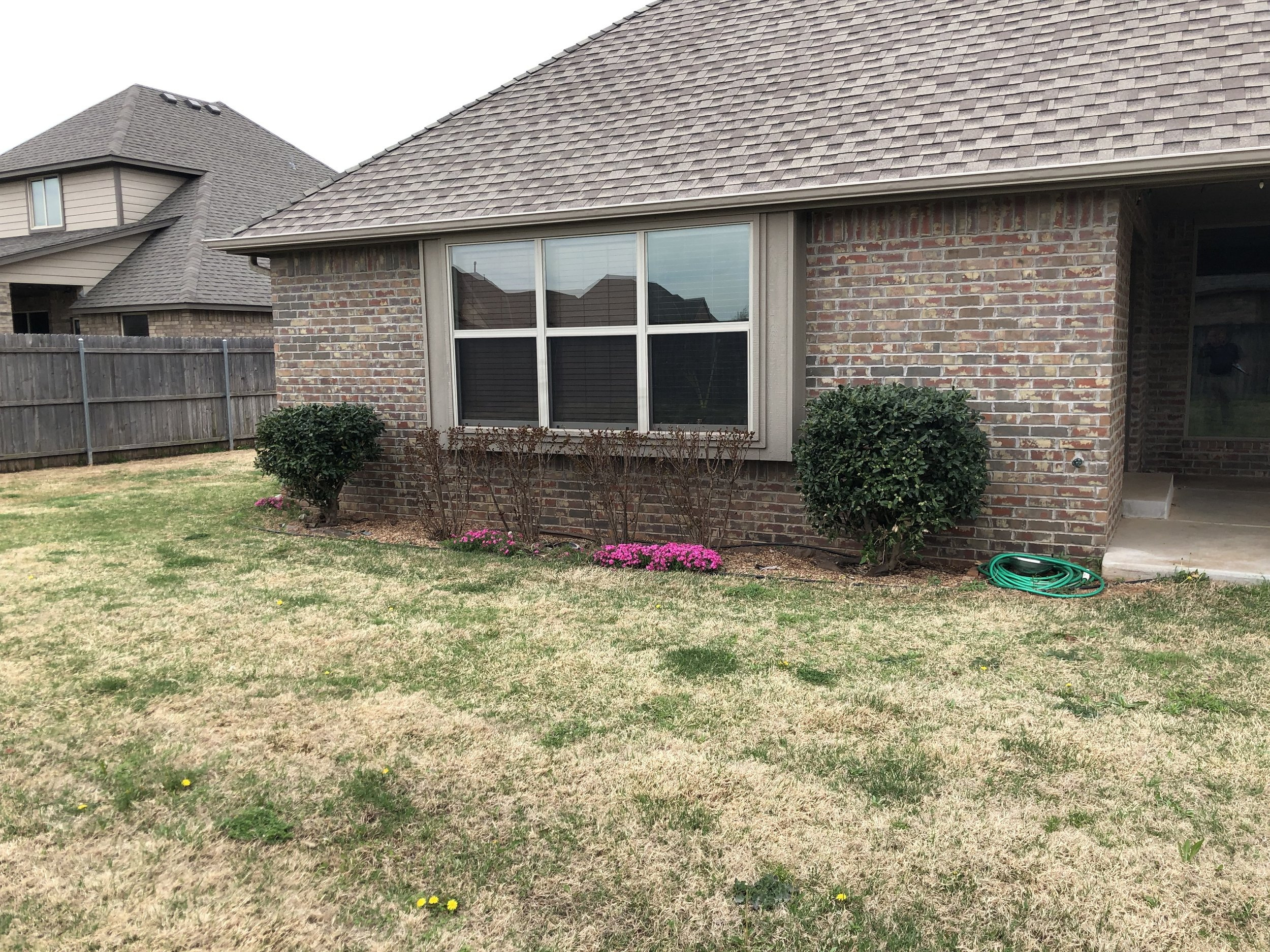 How a Bermuda lawn looks in April when no fall pre-emergent applications were made.