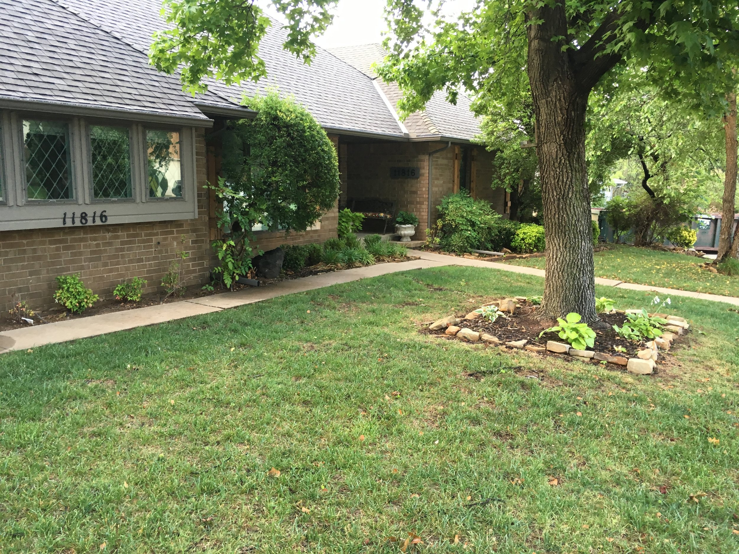 Example of a shady lawn that is thing and desperately in need of fall overseeding.