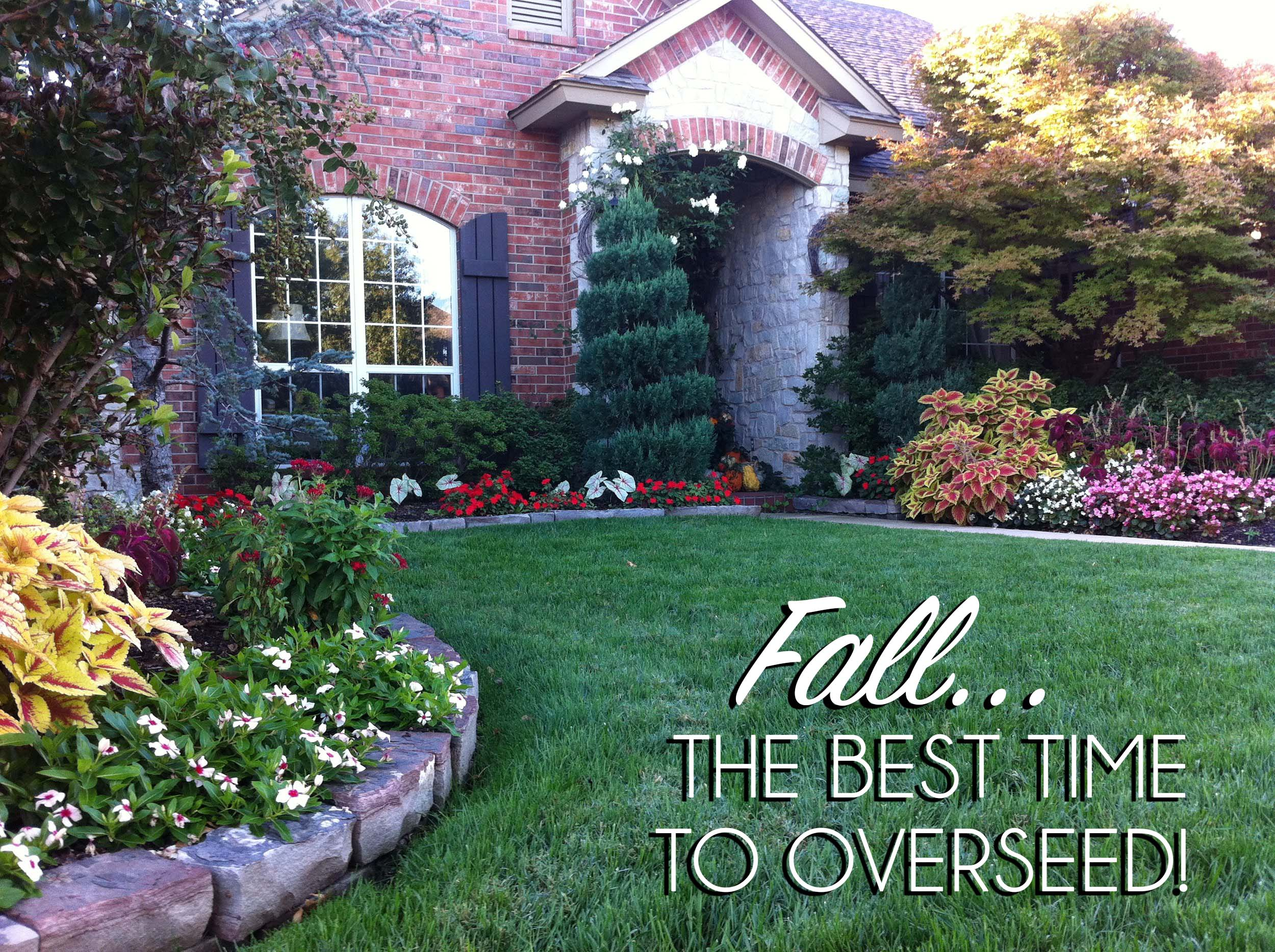 Fall - the best time to overseed!.jpg