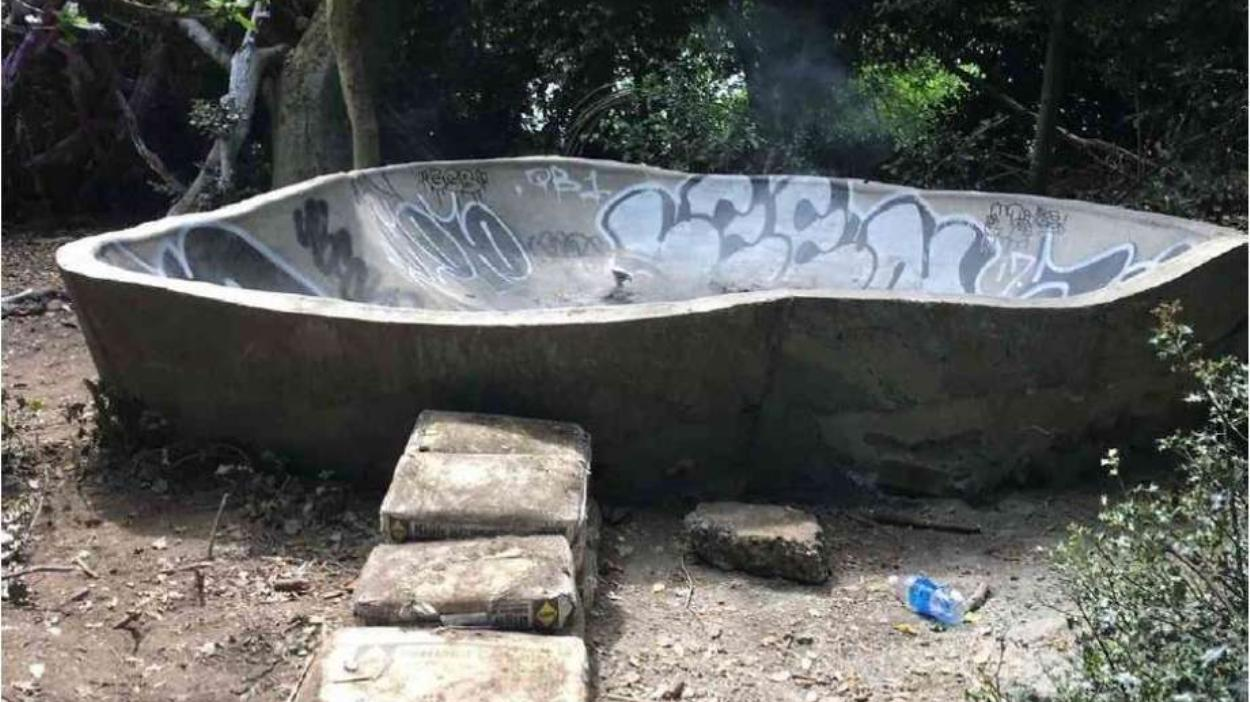 duck island bowl tile.jpeg