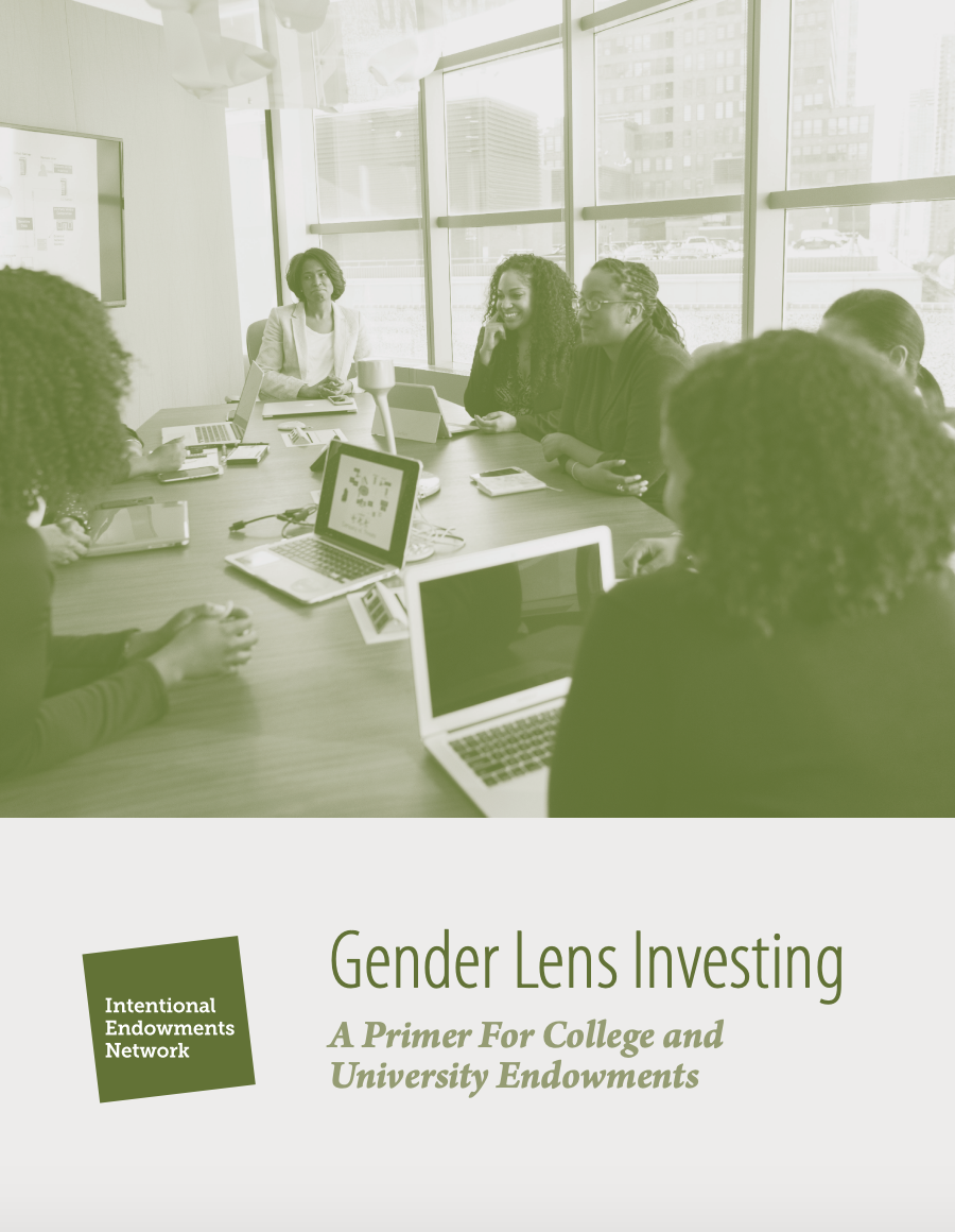 Gender Lens Primer for College and University Endowments. League of Allies was a contributing author.