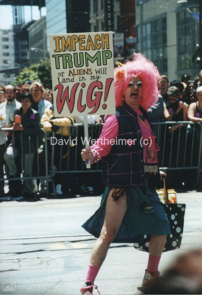 impeach-trump-or-aliens-will-land-in-my-hair.JPG