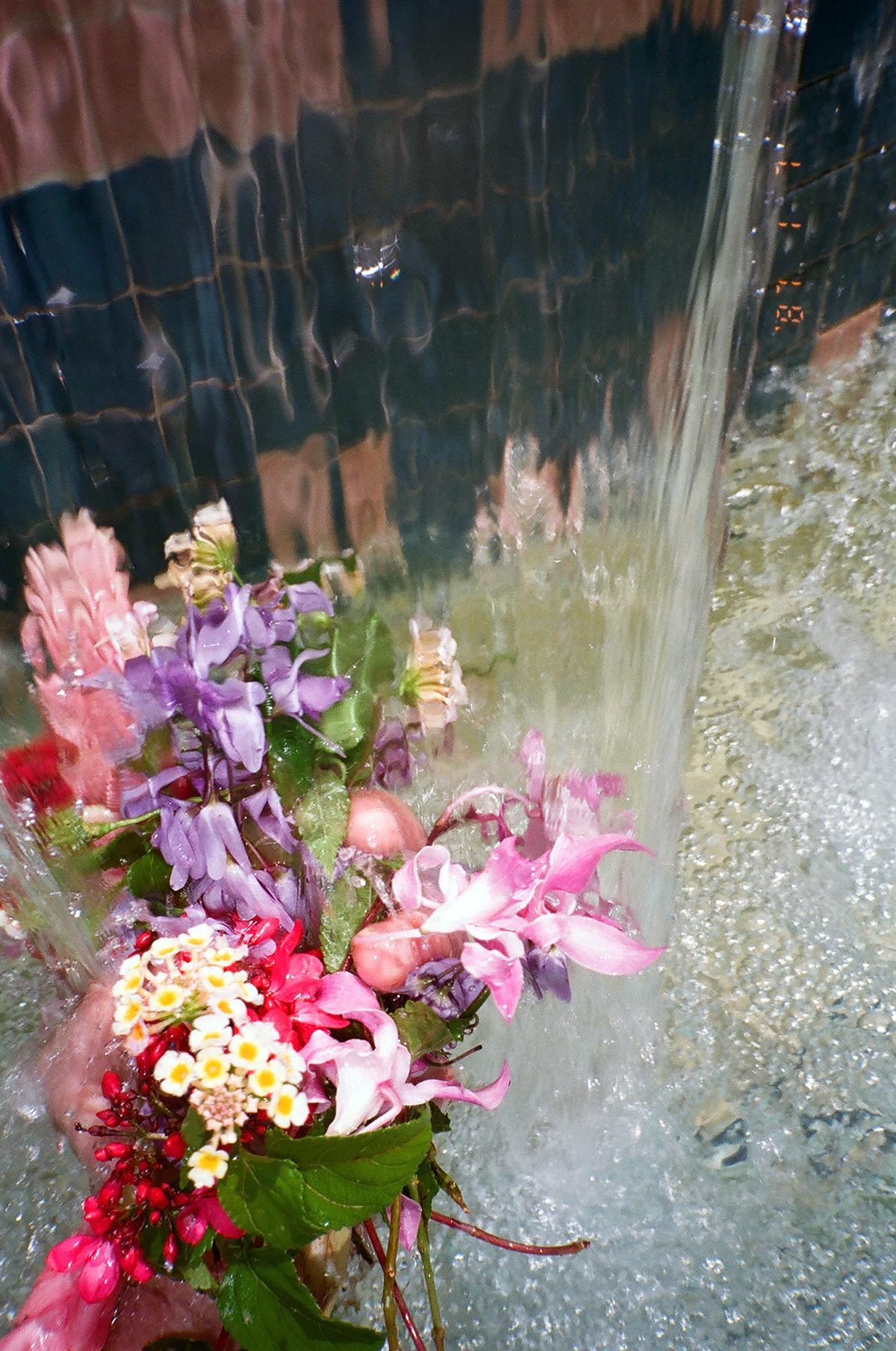 waterfallflowersweb.jpg
