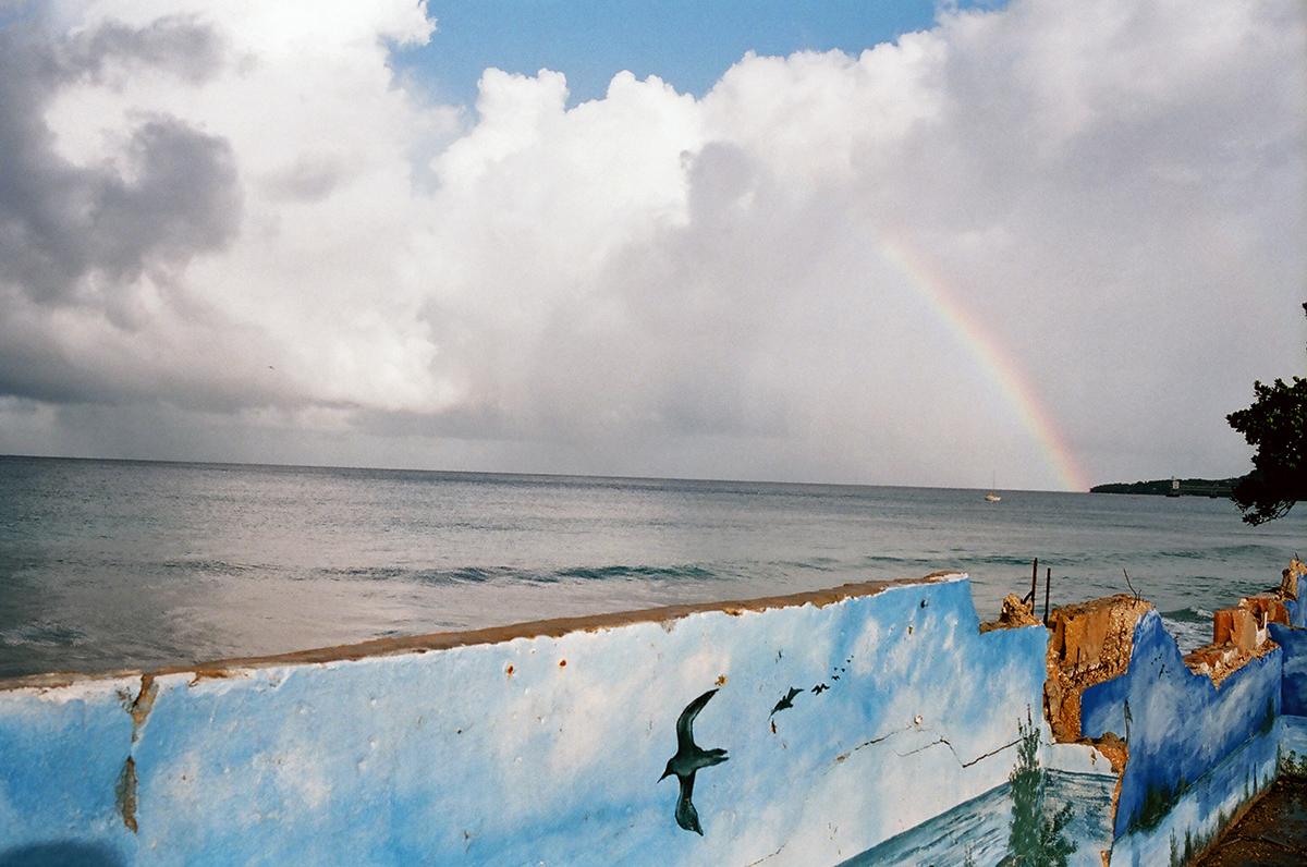 aguadillawallrainbowweb.jpg