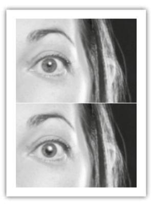 La dilatación y la contracción de las pupilas nos ofrecen una información valiosa