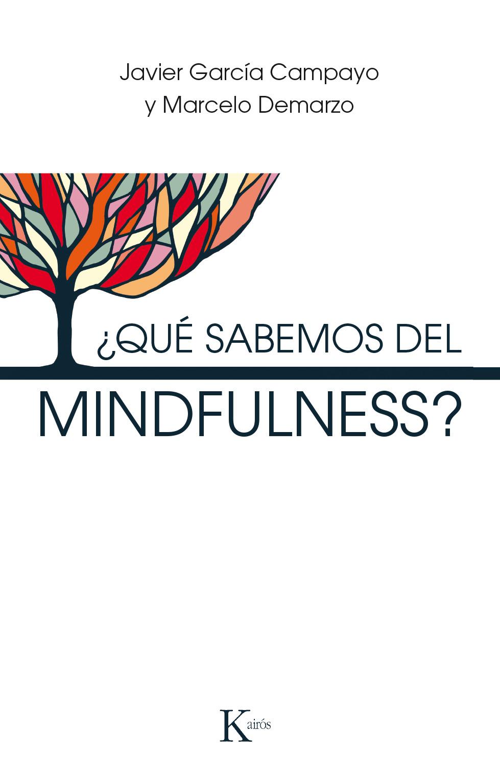 que_sabemos_del_mindfulness.jpg