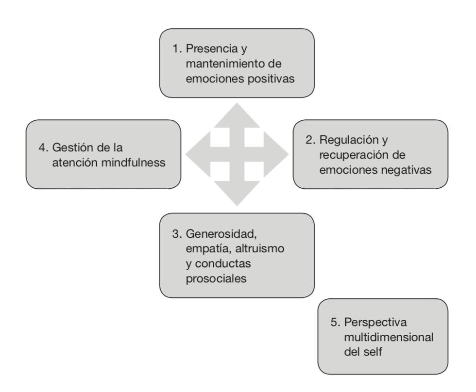 Mapa conceptual de los cinco constituyentes que se trabajan en el programa EBC.