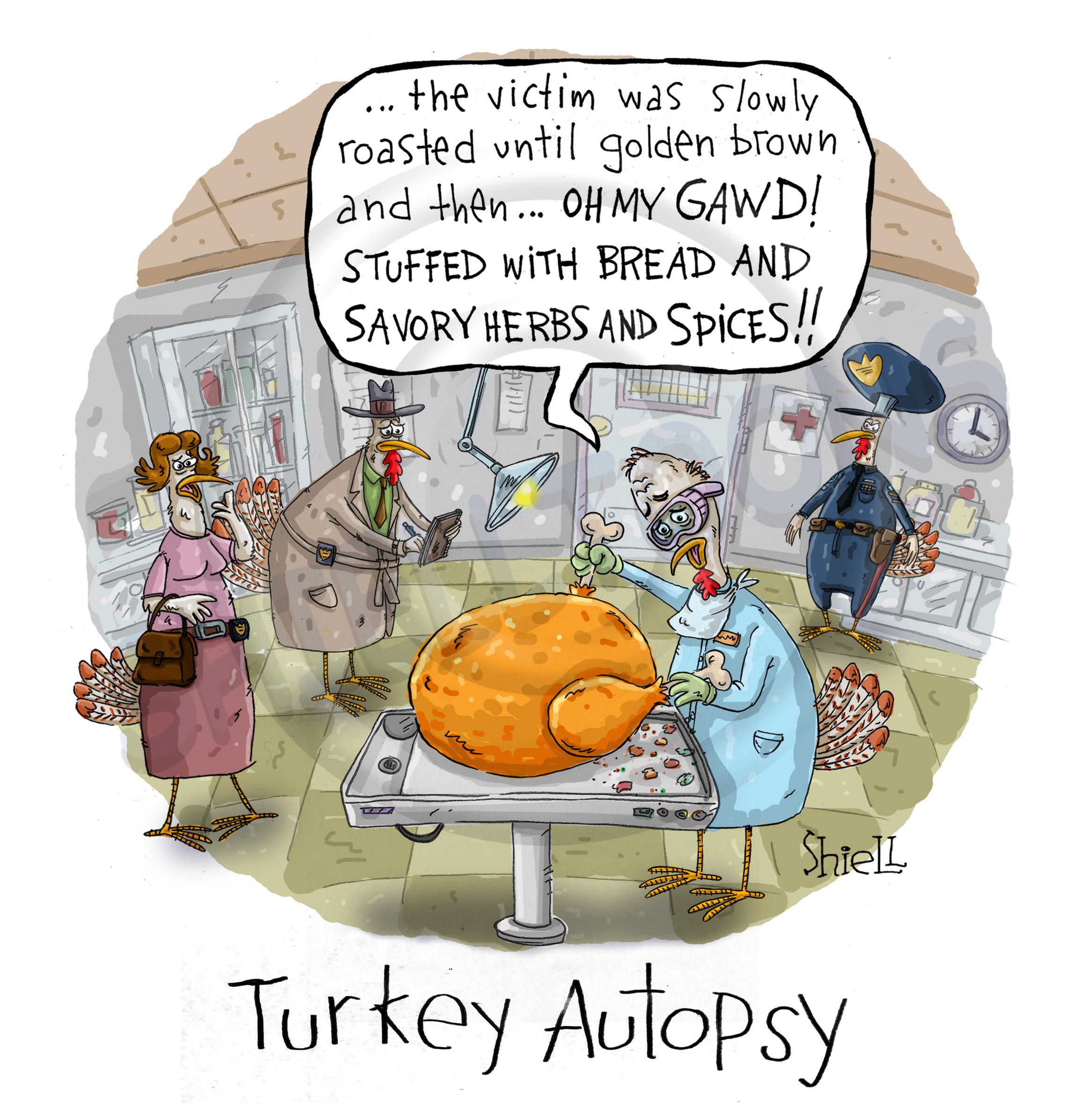 WM_Turkey_Autopsy_Colour_01BW.jpg