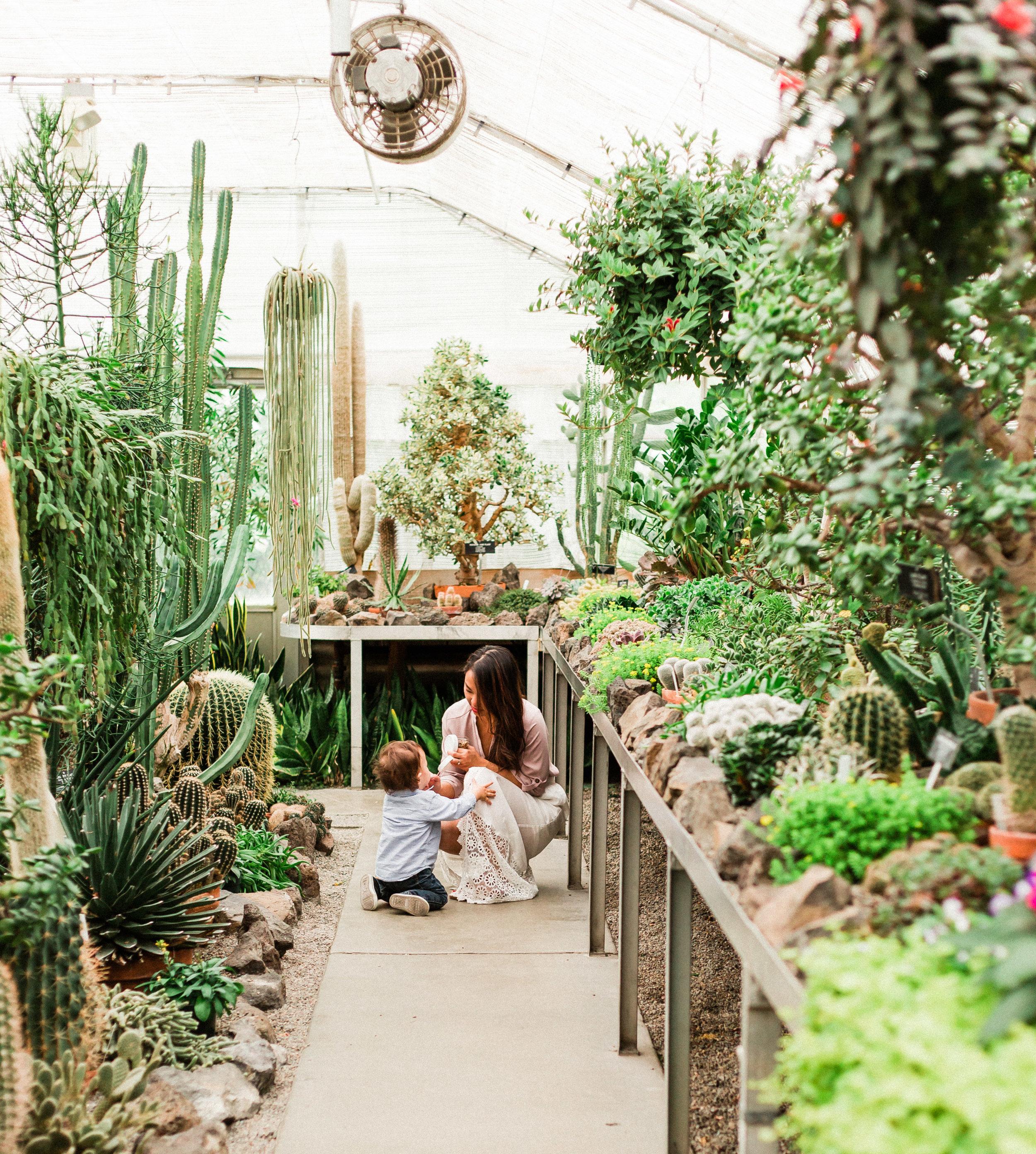 Gaiser Conservatory photo shoot