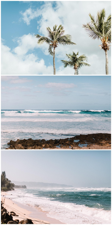 Hawaii-Trip_0049.jpg