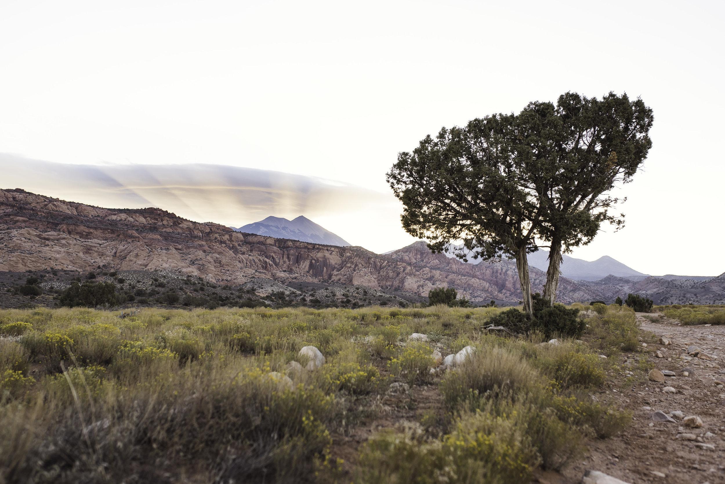 Moab, UT-1254.jpg